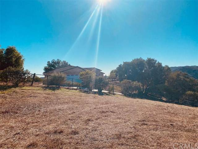 40663 Los Robles Road, Fallbrook, CA 92028 (#SW20251306) :: Blake Cory Home Selling Team