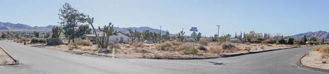 0 Palm Avenue - Photo 1