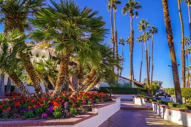 30 Alfaro Drive, Rancho Mirage, CA 92270 (#219054168DA) :: Team Forss Realty Group