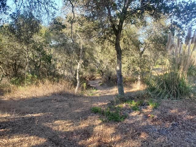 0 Mallory Canyon Road - Photo 1