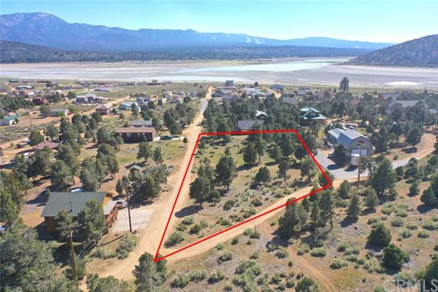 1 Pond Drive, Big Bear, CA 92314 (#OC20254356) :: Wendy Rich-Soto and Associates