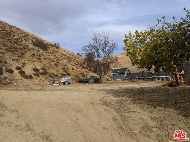 509 North Drive, Lebec, CA 93243 (#20669464) :: The DeBonis Team