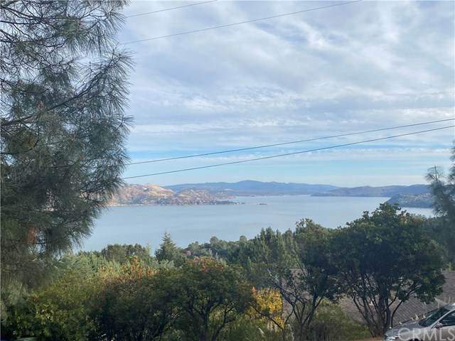 3275 Pine Terrace Drive, Kelseyville, CA 95451 (#LC20257175) :: Compass