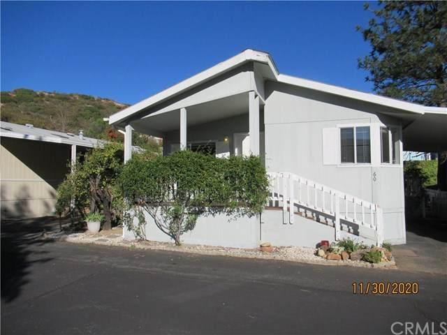 35109 Highway 79 #60 #60, Warner Springs, CA 92086 (#SW20250166) :: Team Forss Realty Group