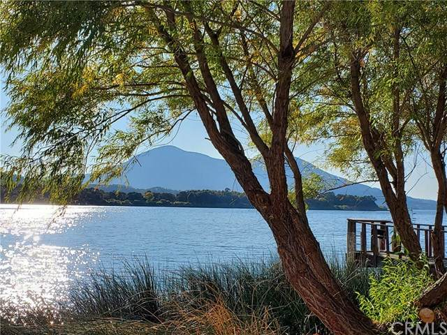 13050 Island Drive #37, Clearlake Oaks, CA 95423 (#LC20259043) :: The Results Group