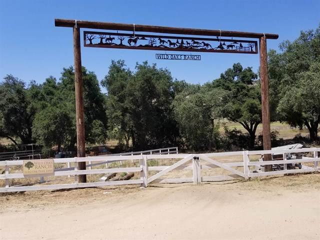 26362 Oak Trail Road - Photo 1