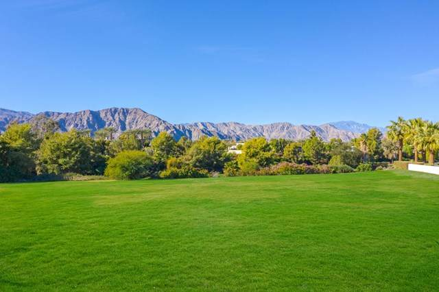 81310 Amundsen Avenue, La Quinta, CA 92253 (#219054722DA) :: Re/Max Top Producers