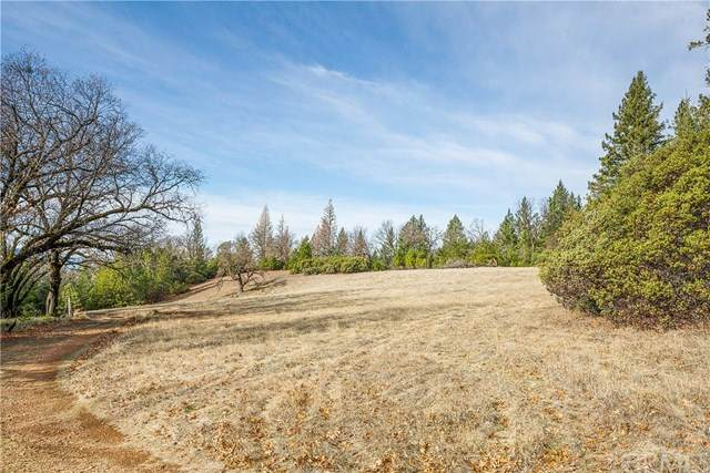8019 High Valley Road, Clearlake Oaks, CA 95423 (#LC20262709) :: The Results Group