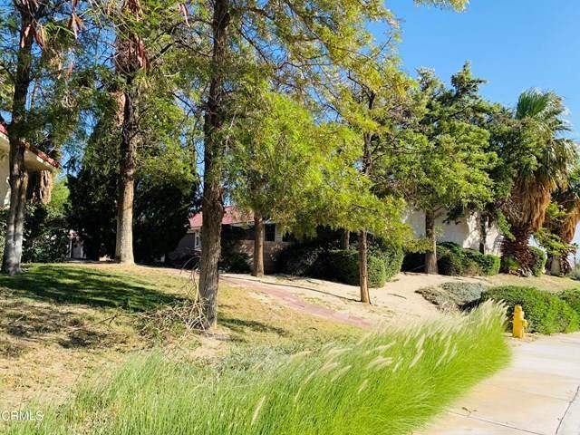 66880 Pierson Boulevard, Desert Hot Springs, CA 92240 (MLS #P1-2710) :: Brad Schmett Real Estate Group