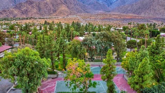 2857 N Los Felices Road #104, Palm Springs, CA 92262 (#219054918DA) :: Team Forss Realty Group
