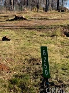 6250 Oak Way - Photo 1