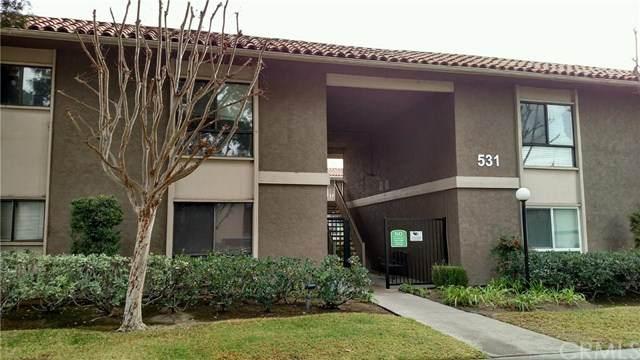 531 La Veta Park Circle - Photo 1