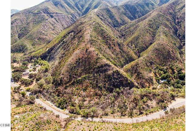 0 Maricopa Highway, Ojai, CA 93023 (#V1-3196) :: Wendy Rich-Soto and Associates