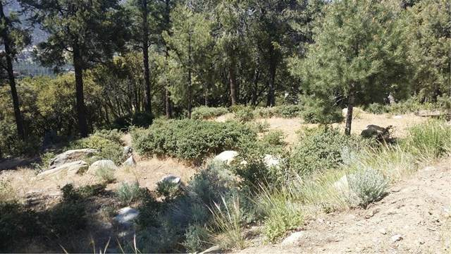 1704 Zermatt Drive, Pine Mountain Club, CA 93222 (#SR21001481) :: Compass