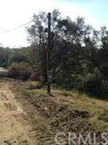 3348 Wildcat Springs Road - Photo 4