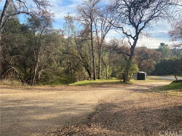 3302 Windy Hollow Road, Mariposa, CA 95338 (#MP21003593) :: RE/MAX Masters
