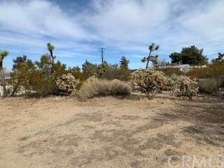7035 Lennox Avenue, Yucca Valley, CA 92284 (#JT20262173) :: RE/MAX Masters