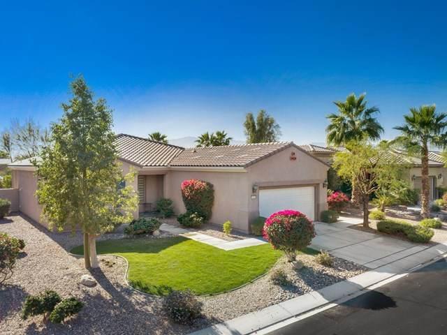 81163 Avenida Colonias, Indio, CA 92203 (#219055368DA) :: American Real Estate List & Sell