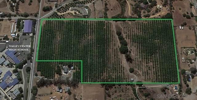 14060 West Oak Glen Road, Valley Center, CA 92082 (#210000534) :: The Alvarado Brothers