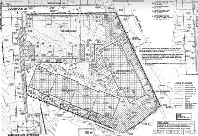 Arnold Way, Alpine, CA 91901 (#210000549) :: American Real Estate List & Sell