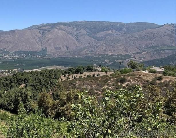 31465 Pauma Heights Road, Valley Center, CA 92056 (#210000557) :: The Alvarado Brothers