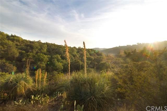 0 Hunky Dory Lane, Trabuco Canyon, CA 92679 (#LG21004832) :: Berkshire Hathaway HomeServices California Properties