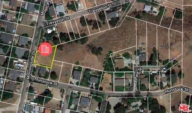 0 Morningside Drive, Castaic, CA 91384 (MLS #21678228) :: Desert Area Homes For Sale
