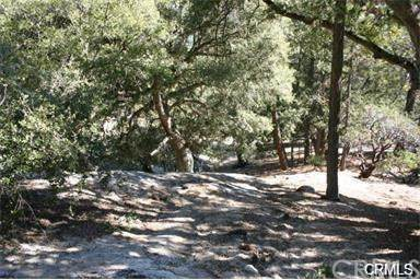 0 Walters Drive, Idyllwild, CA 92549 (#SW21005423) :: The Results Group