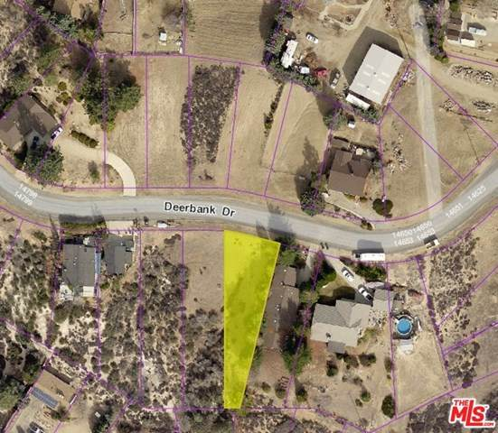 0 Deerbank Drive Drive, LEL - Lake Elizabeth, CA 93532 (#21678320) :: Compass