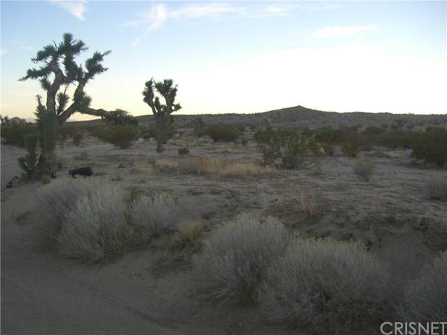 0 Bright, Mojave, Mojave, CA 93501 (#SR21006186) :: Zutila, Inc.
