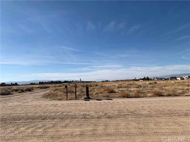 0 Vac/Ave C8/Vic 80 Stw, Antelope Acres, CA 93536 (#SR21006266) :: RE/MAX Masters