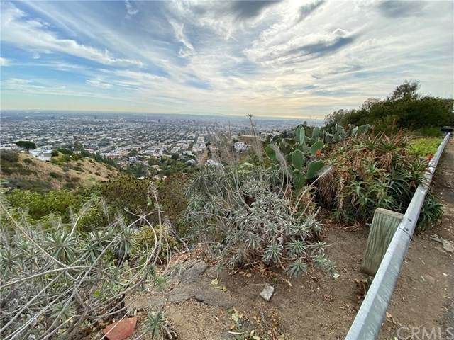 0 Grand View Dr, West Hollywood, CA 90046 (#DW21006329) :: The Parsons Team