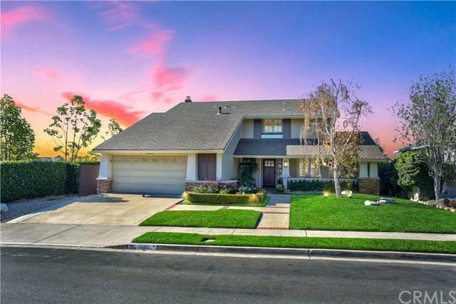 33091 Daniel Drive, Dana Point, CA 92629 (#LG21006452) :: Z Team OC Real Estate