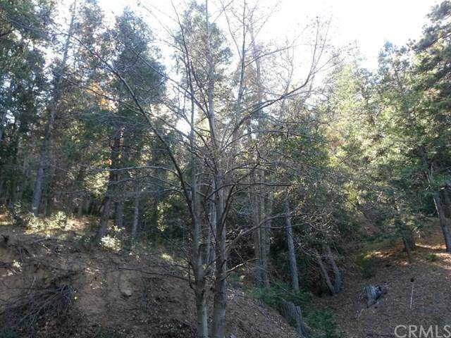 0 Torrey Road, Cedar Glen, CA 92321 (#EV21006964) :: The Results Group