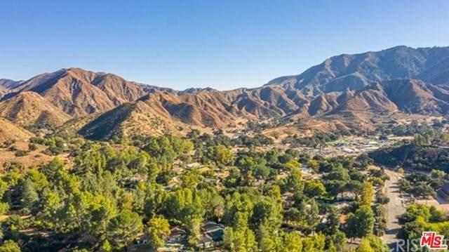 15857 Beaver Run Road, Canyon Country, CA 91387 (#21679498) :: The Alvarado Brothers