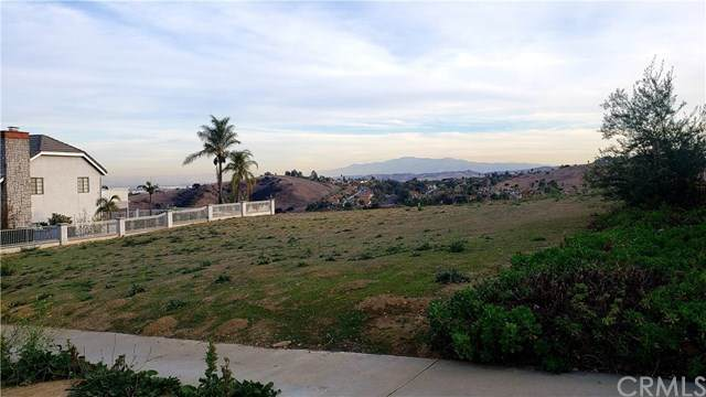 2019 Scenic Ridge Drive, Chino Hills, CA 91709 (#TR21006636) :: The Alvarado Brothers