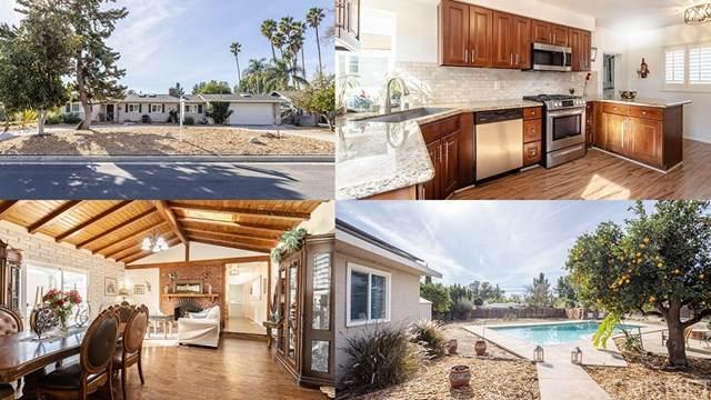17430 Ludlow Street, Granada Hills, CA 91344 (#SR21008625) :: Bob Kelly Team