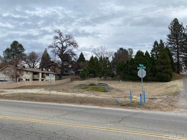 0-XXX Road 427, Oakhurst, CA 93644 (#PW21009188) :: Mint Real Estate