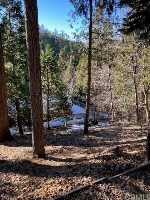 355 Mittry Lane, Lake Arrowhead, CA 92321 (#EV21009196) :: Bob Kelly Team