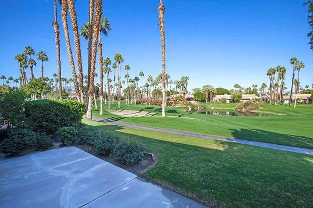 76558 Daffodil Drive, Palm Desert, CA 92211 (#219055752DA) :: Team Forss Realty Group