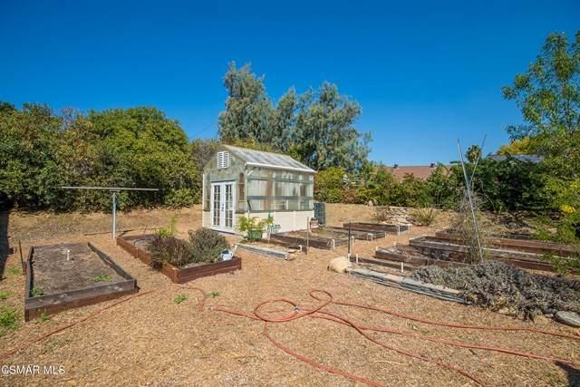 Newbury Lane, Newbury Park, CA 91320 (#221000225) :: RE/MAX Masters