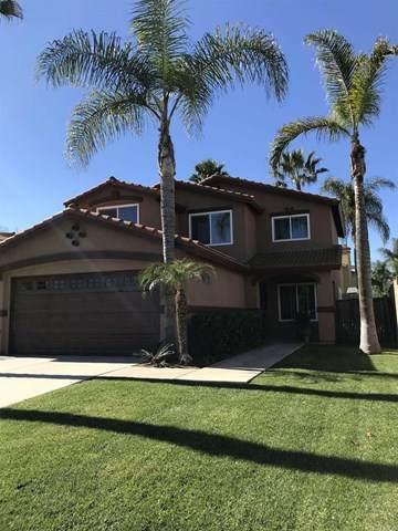 3310 Wittman Way, San Ysidro, CA 92173 (#PTP2100333) :: Realty ONE Group Empire