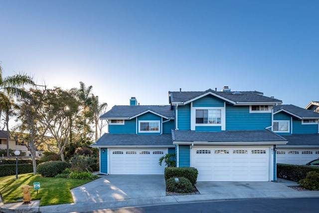 454 Summer View Cir, Encinitas, CA 92024 (#210001316) :: eXp Realty of California Inc.