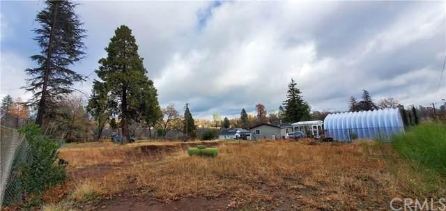 446 Apple Lane, Paradise, CA 95969 (#SN21010219) :: The Brad Korb Real Estate Group