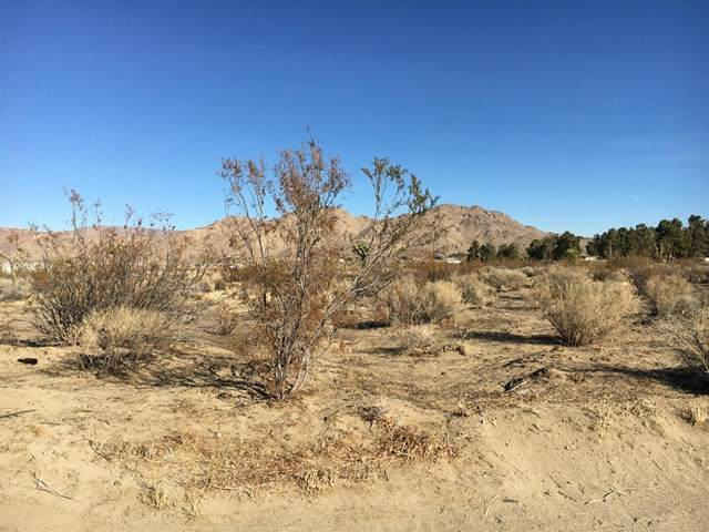 30124 Clark Road, Lucerne Valley, CA 92356 (#531299) :: eXp Realty of California Inc.