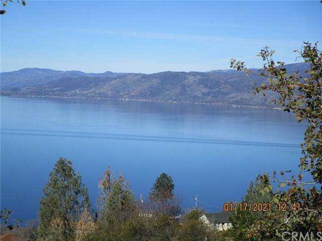 3153 Skyline Drive, Kelseyville, CA 95451 (#LC21010918) :: RE/MAX Masters