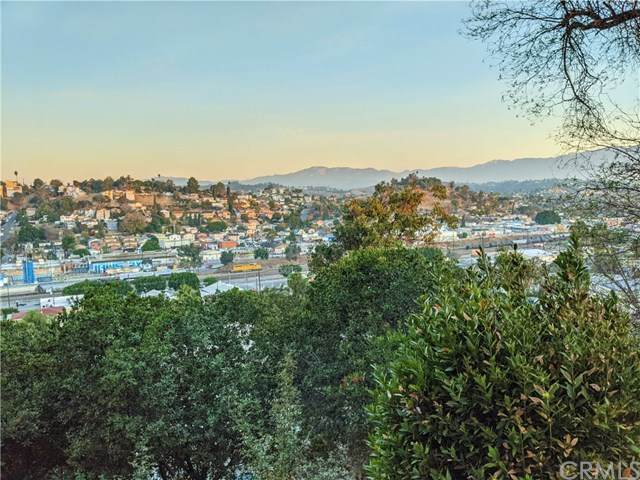 5164 Cavanagh Road, Los Angeles (City), CA 90032 (#SB21011240) :: Better Living SoCal