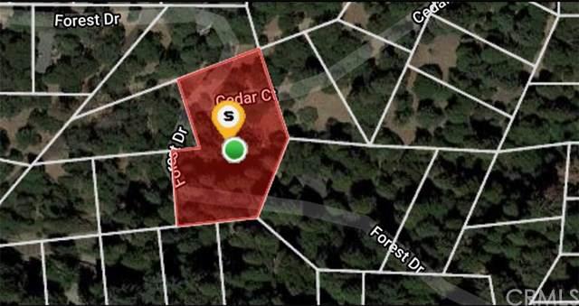 0 Cedar Court, Cedarpines Park, CA 92322 (#CV21011345) :: Crudo & Associates