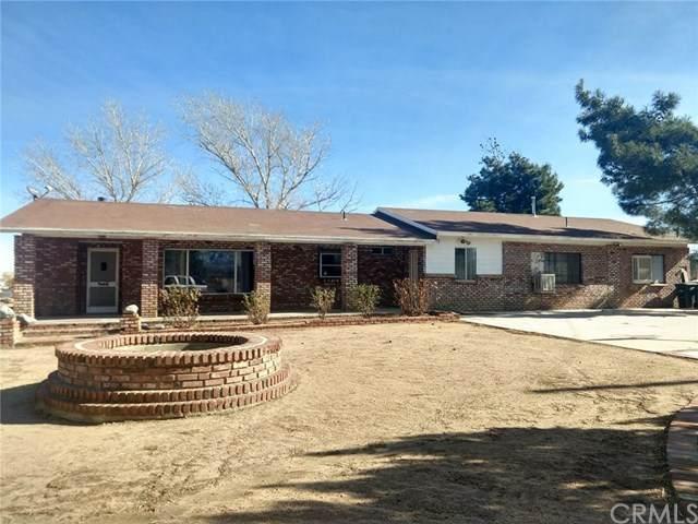 10175 Wilson Ranch Road, Phelan, CA 92371 (#EV21009558) :: The Alvarado Brothers