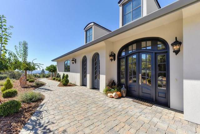 9005 Lauren Lane, Jackson, CA 95642 (#ML81826287) :: Doherty Real Estate Group